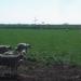 Vert pastoral