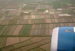 Survol de rizières