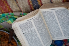 Bible-brésilienne-1024x683.jpg