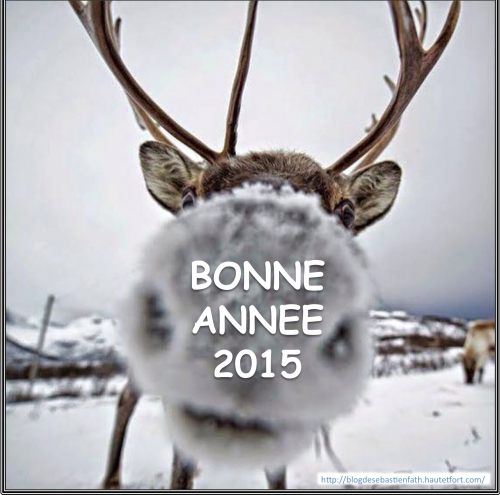 BONNE ANNEE 2015.jpg