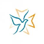 protestantisme, églises protestantes, europe, anglicanisme, livre, prodoc, memogrames, synode national de l'église protestante unie de Belgique